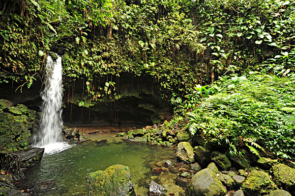 dominica, morne trois pitons, tourists visiting emerald pool